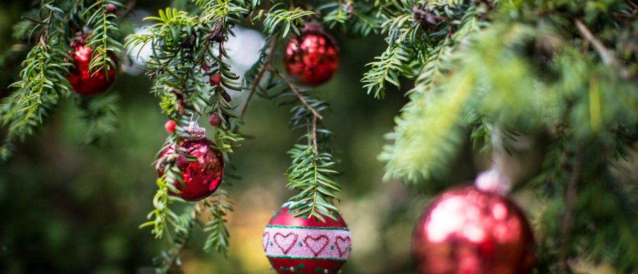 Winkworth Arboretum Christmas Carols – 13th December 2018